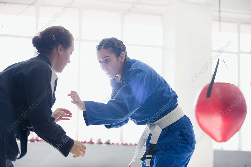 Women practicing jiu-jitsu in gym