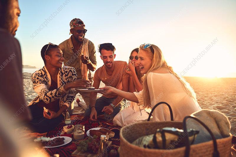 Smiling young friends enjoying picnic