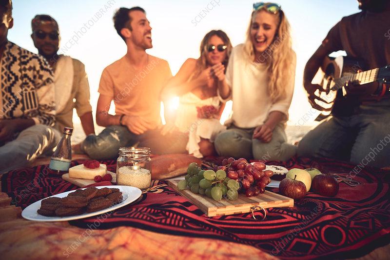 Young friends enjoying sunny summer picnic