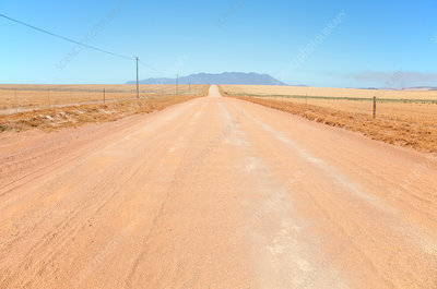 Dirt road during drought