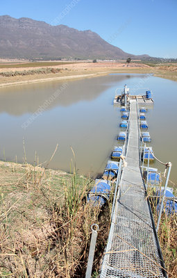 Low dam water levels during a drought