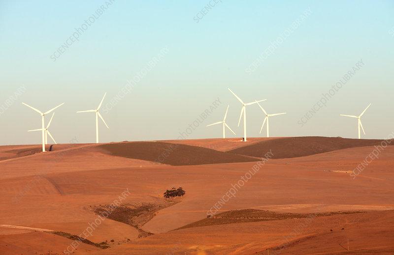 Ceres wind farm, Ceres