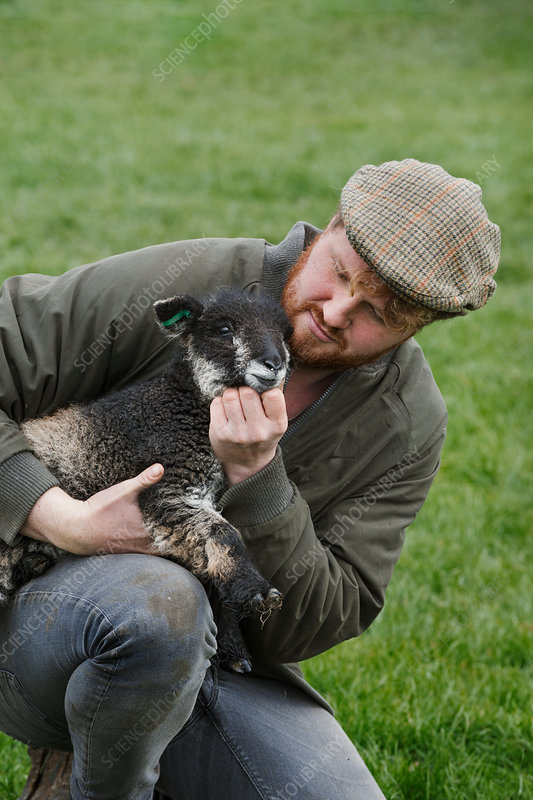 A farmer holding a young lamb