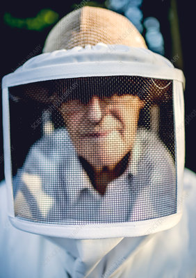 Beekeeper in a suit wearing a veil