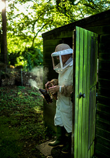 A beekeeper walking out of a shed