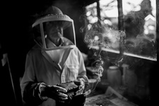 A beekeeper in a white suit with a smoker