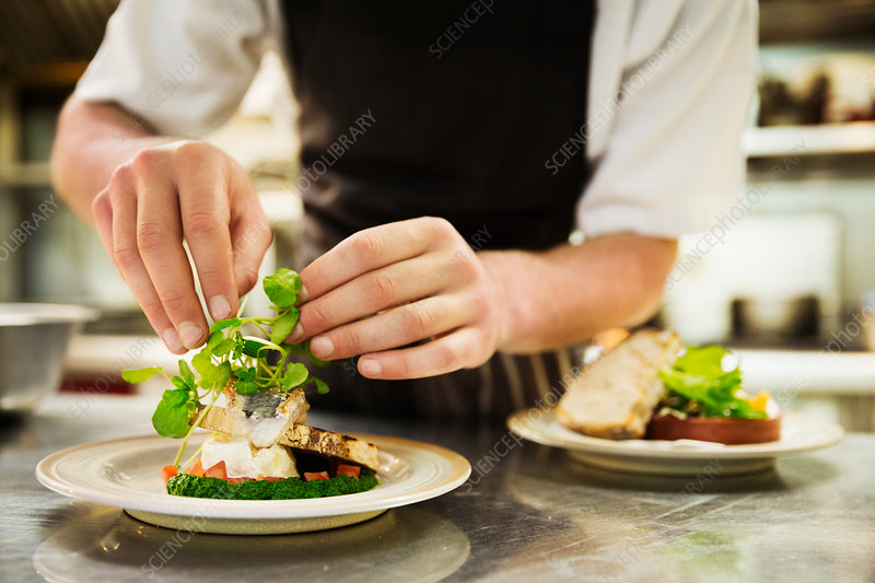 Chef adding salad around grilled fish