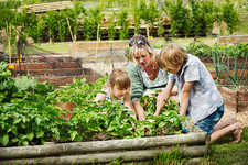 Woman, boy and girl by a vegetable bed