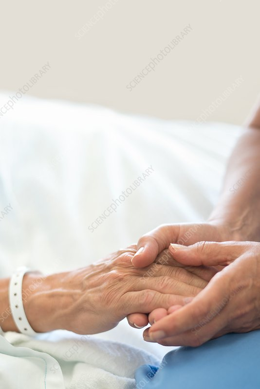 Nurse holding male patient's hand in hospital bed