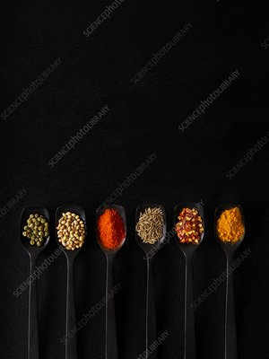 Dried spices on spoons