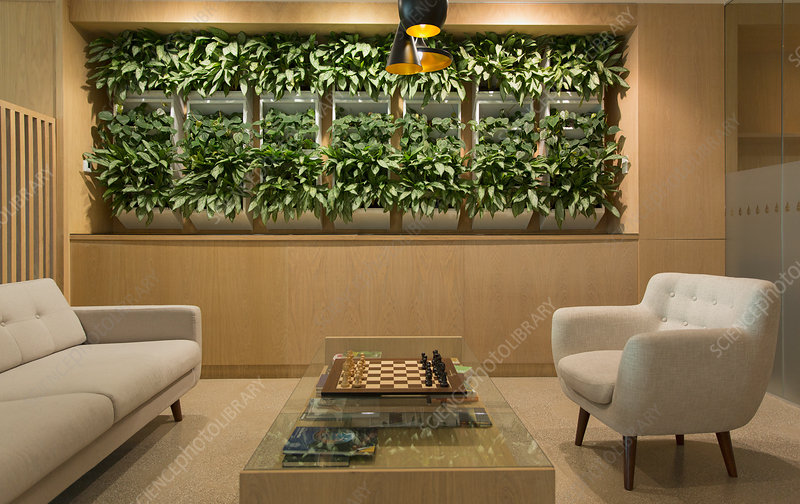 Lounge with plant display, chessboard and seating
