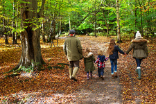 Family walking in woods in Autumn