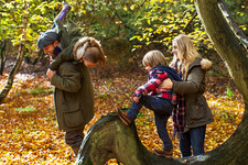 Family playing on tree in woods
