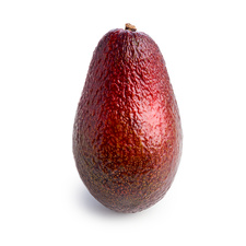 Red avocado