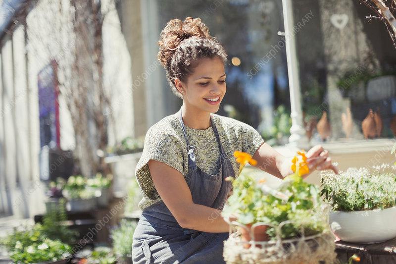 Smiling florist arranging display