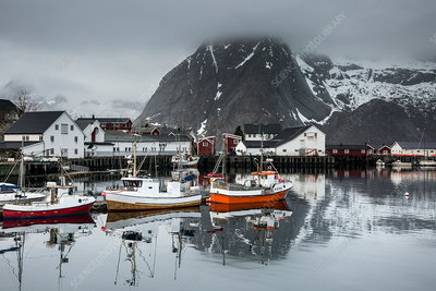Fishing boats and village at waterfront, Norway