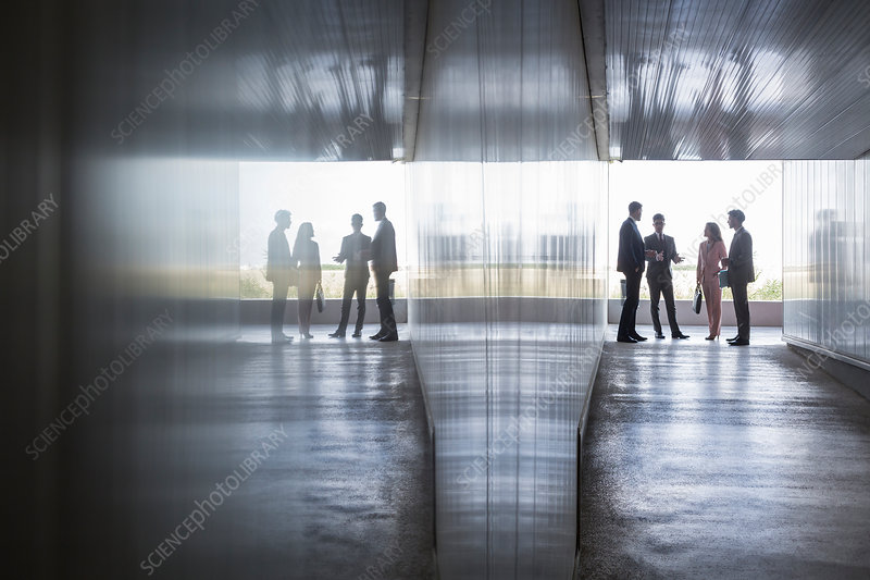 Silhouette of business people talking corridor
