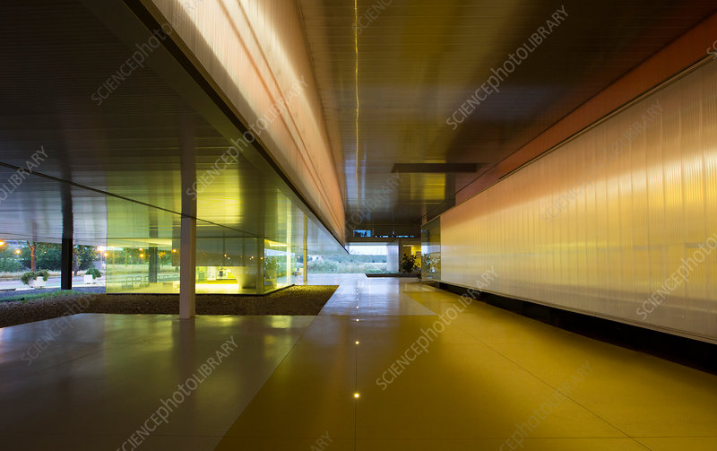 Illuminated architectural modern office lobby