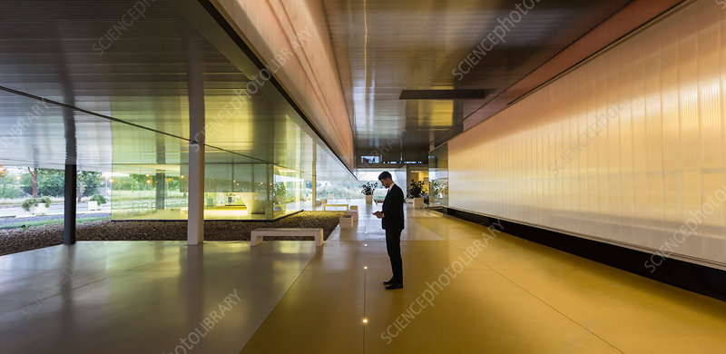 Businessman texting in office corridor