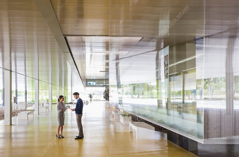 Businessman and businesswoman talking corridor