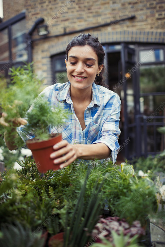 Young woman gardening, holding potted plant