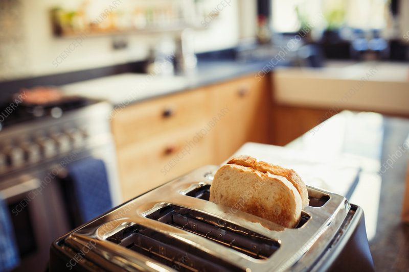 Toast in toaster in kitchen