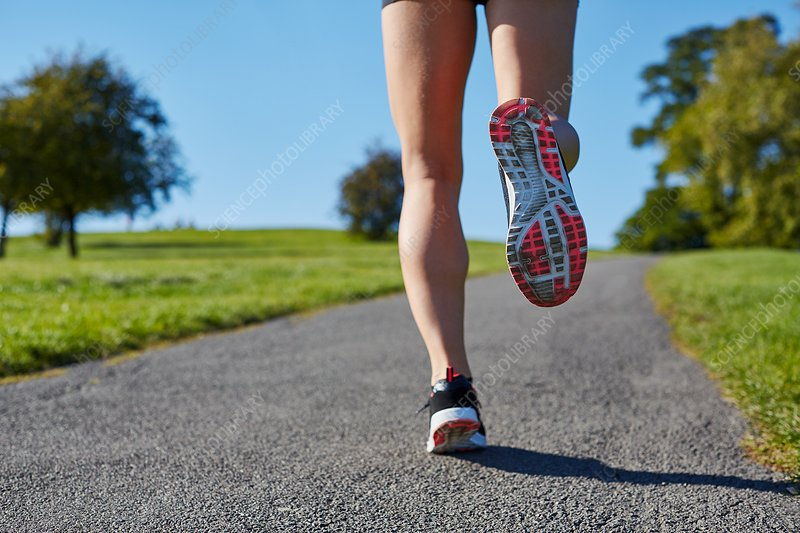 Woman jogging on a path
