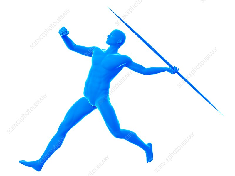 Javelin thrower, illustration