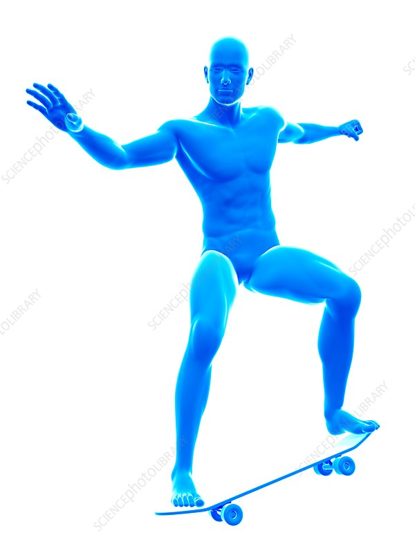 Skate boarder, illustration