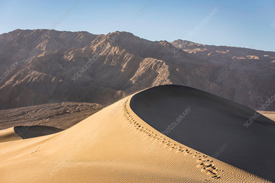 Footprints on Mesquite Flat Sand Dunes in Death Valley, USA