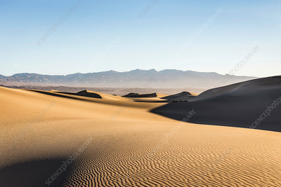 Rippled Mesquite Flat Sand Dunes in Death Valley, USA