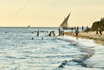 People on beach, Zanzibar City, Tanzania