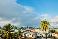 Palm trees and rooftops, Zanzibar City, Tanzania