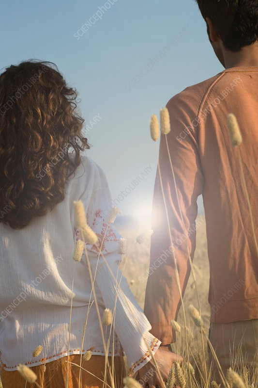 Rear view of couple holding hands in wheat field