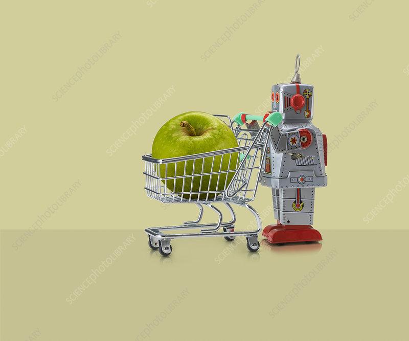 Toy robot pushing miniature shopping trolley