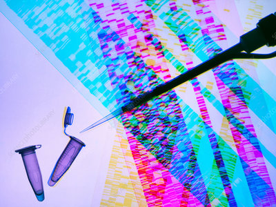 Genetic research, pipette and DNA samples