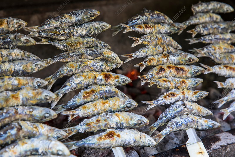 Sardines on skewer over barbecue grill