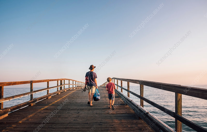 Rear view of father and son walking on pier, USA