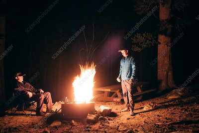 Friends camping in forest by campfire, California, USA