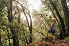 Boy in forest looking over shoulder at camera, USA