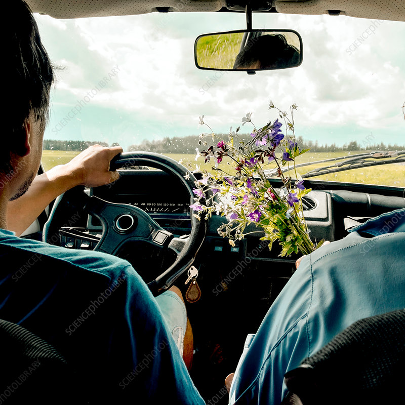 Man driving passenger with wild flowers, Russia