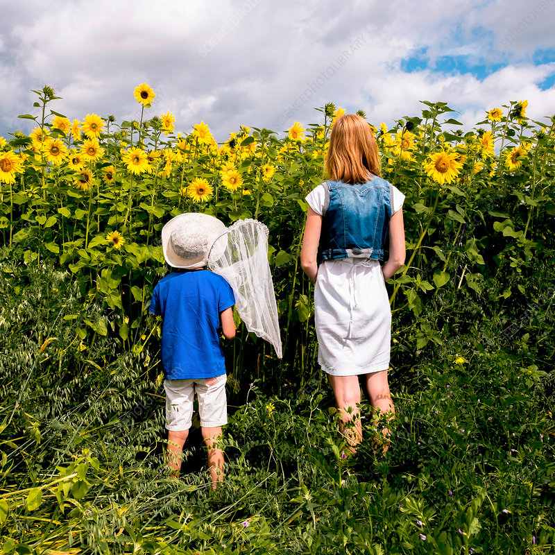 Mother and son standing in filed of sunflowers, Russia