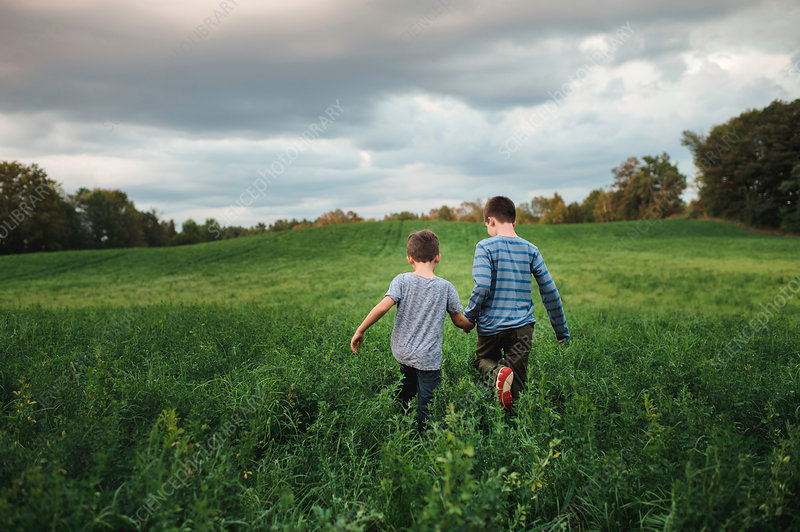 Brothers walking on green grassy field