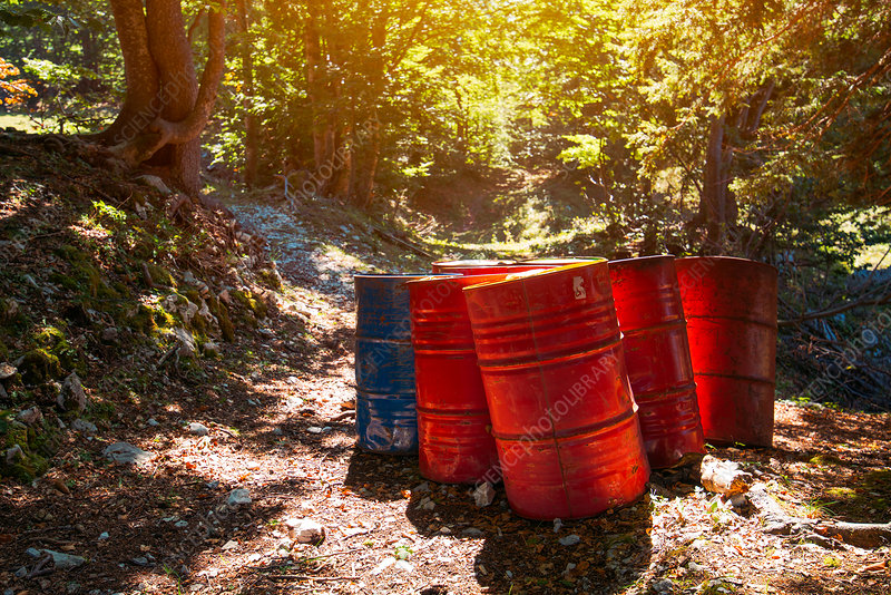 Toxic waste barrels in forest