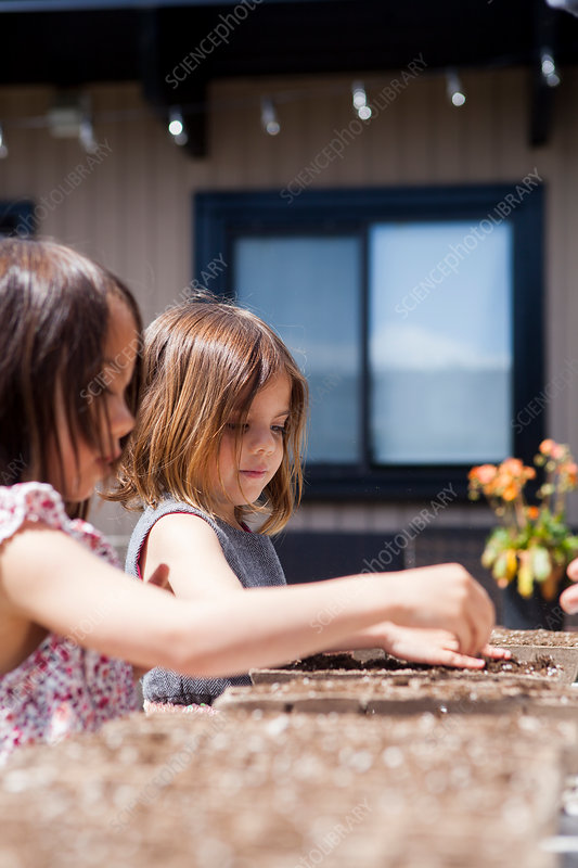 Girls planting seedlings on sunny patio