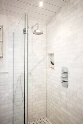Luxury home showcase bathroom shower
