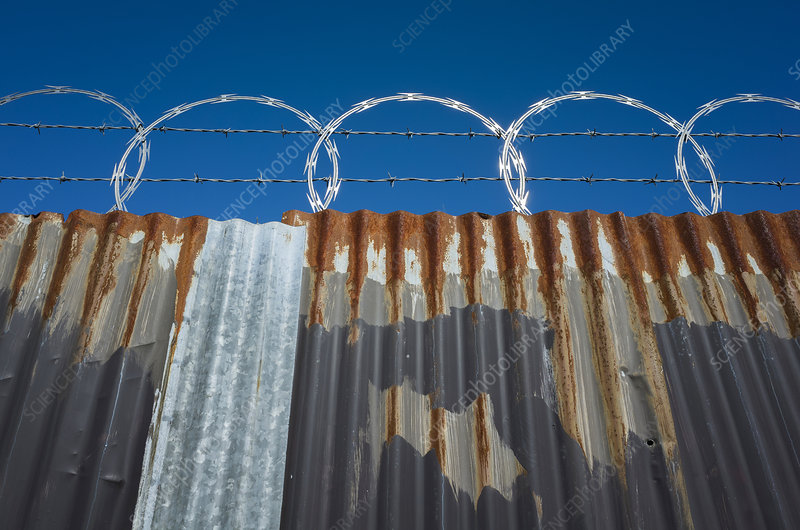 Worn corrugated metal fence with razor wire