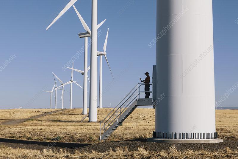 Wind farm technician