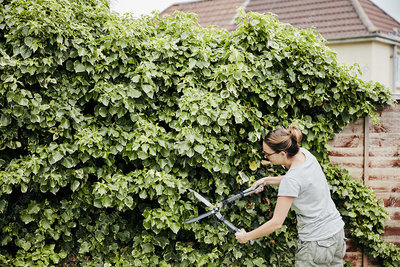 Woman using shears to cut climbing plant growing over fence