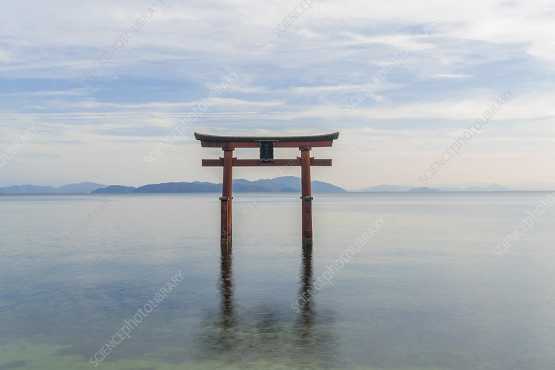 Torii gate in the middle of a lake